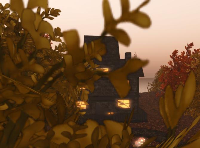pumpkin town_004